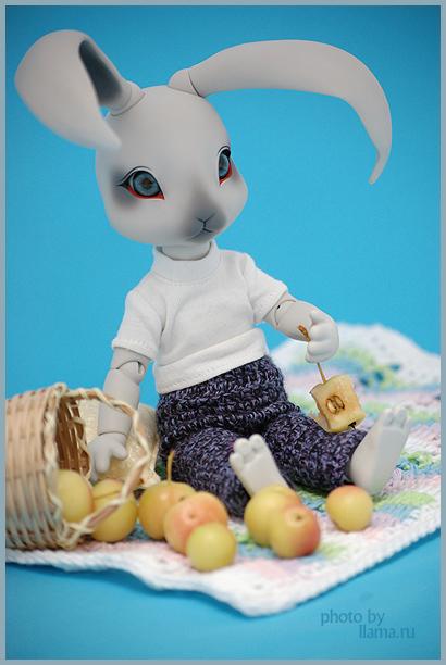 Бенджи с корзиной яблок